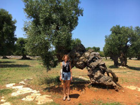 Jag framför 3000 år gammalt träd
